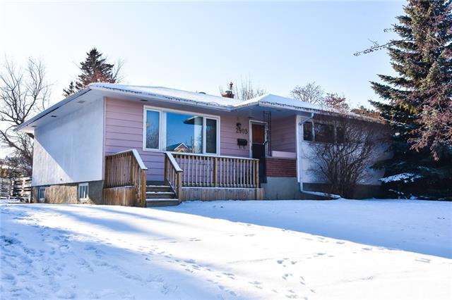 2903 13 Avenue NW, Calgary, AB T2N 1M1 (#C4215411) :: Redline Real Estate Group Inc