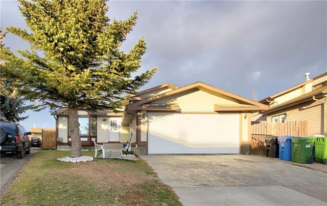 255 Castlebrook Road NE, Calgary, AB T3J 2C5 (#C4215498) :: Tonkinson Real Estate Team