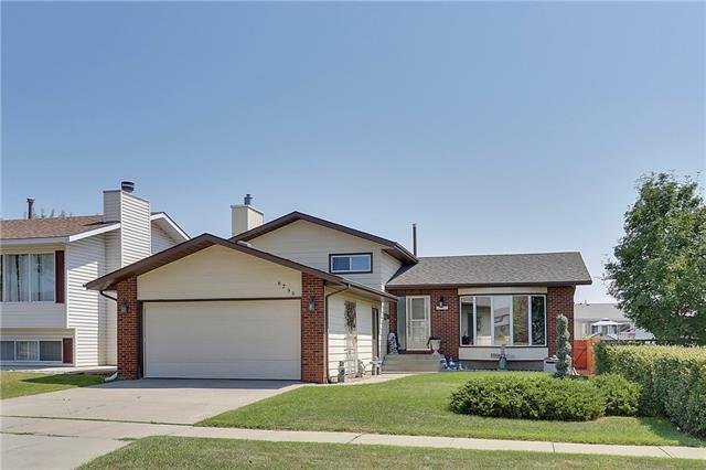 6795 Temple Drive NE, Calgary, AB T1Y 5V3 (#C4215540) :: Calgary Homefinders