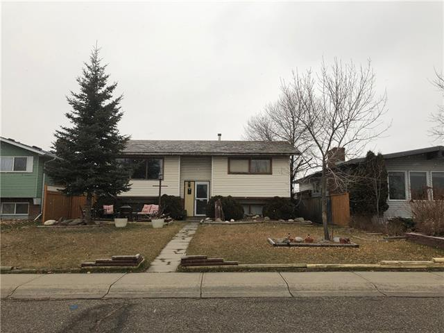 280 Rundlefield Road NE, Calgary, AB T1Y 2W1 (#C4215710) :: Your Calgary Real Estate