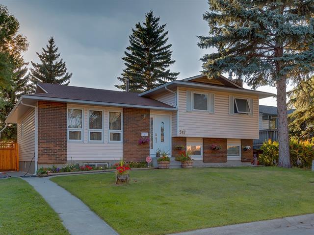347 Templewood Place NE, Calgary, AB T1Y 4A7 (#C4215975) :: Calgary Homefinders