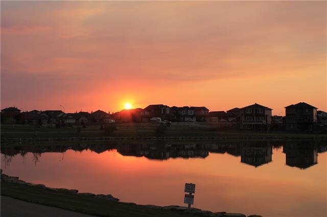 35 Lakes Estates Circle, Strathmore, AB T1P 1K3 (#C4215992) :: Your Calgary Real Estate
