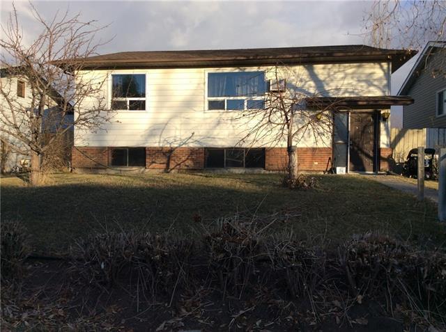 209 Maple Grove Crescent, Strathmore, AB T1P 1G2 (#C4216211) :: Tonkinson Real Estate Team