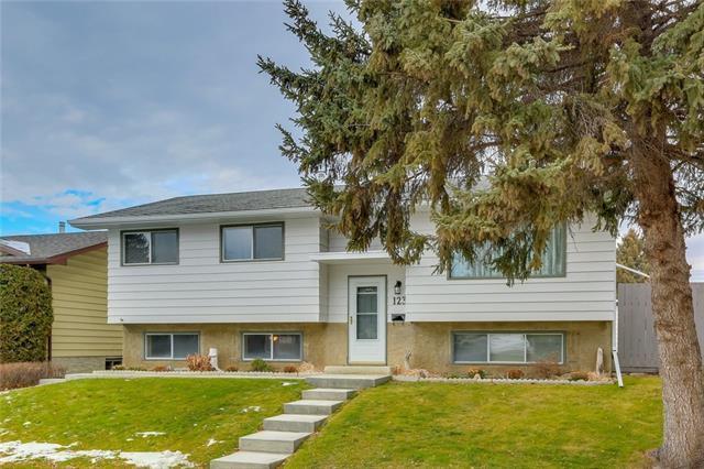 123 Queen Tamara Place SE, Calgary, AB T2J 4G2 (#C4216419) :: The Cliff Stevenson Group