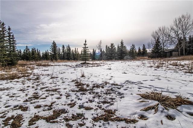 30055 Twp Rd 262, Rural Rocky View County, AB T3P 1C4 (#C4217675) :: Calgary Homefinders