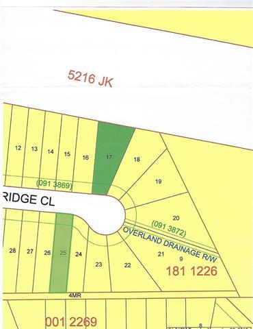 21 Poplar Ridge Close, Didsbury, AB T0M 0W0 (#C4217985) :: Calgary Homefinders