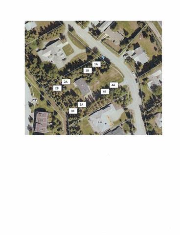137 Kootenay Avenue, Banff, AB T1L 1E3 (#C4218526) :: Canmore & Banff