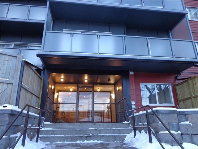 335 Garry Crescent NE #206, Calgary, AB T2K 5X1 (#C4219304) :: Redline Real Estate Group Inc