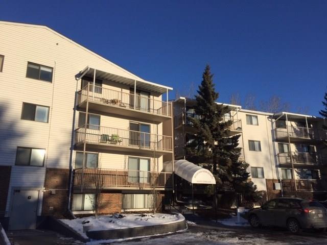 3420 50 Street NW #304, Calgary, AB T3A 2E1 (#C4219533) :: Calgary Homefinders