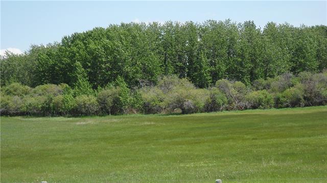 80 Street & 226 Ave, Rural Foothills M.D., AB T0L 0X0 (#C4219626) :: Redline Real Estate Group Inc