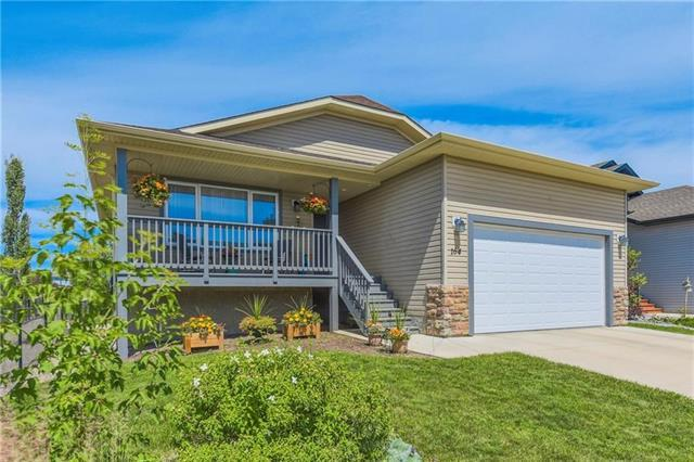 164 Aspen Creek Crescent, Strathmore, AB T1P 0A8 (#C4220853) :: Redline Real Estate Group Inc