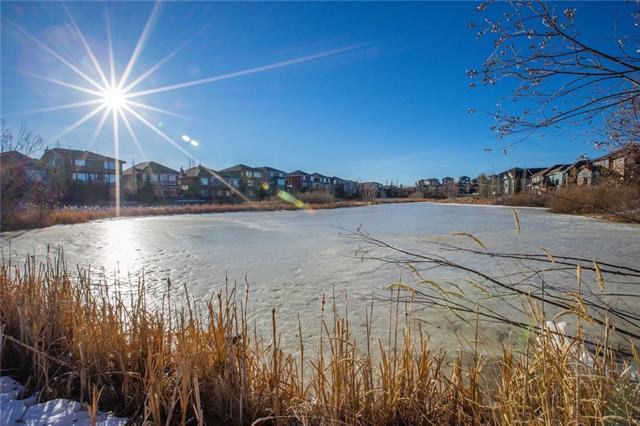 157 Royal Oak Green NW, Calgary, AB T3G 6A7 (#C4222280) :: Calgary Homefinders