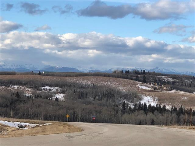 16 Red Willow Court W, Rural Foothills M.D., AB T2X 0X0 (#C4222685) :: Redline Real Estate Group Inc