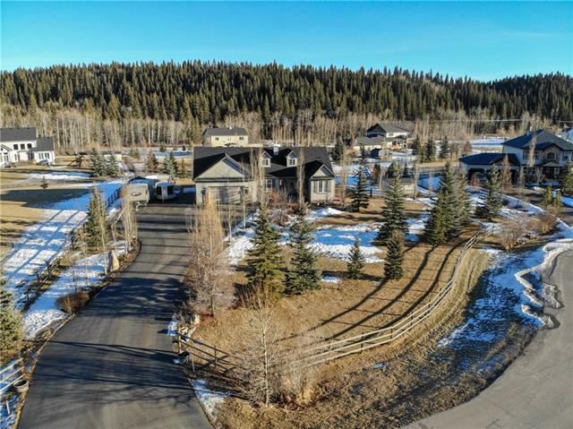 178012 Priddis Meadows Place W, Rural Foothills County, AB T0L 0X0 (#C4222810) :: The Cliff Stevenson Group