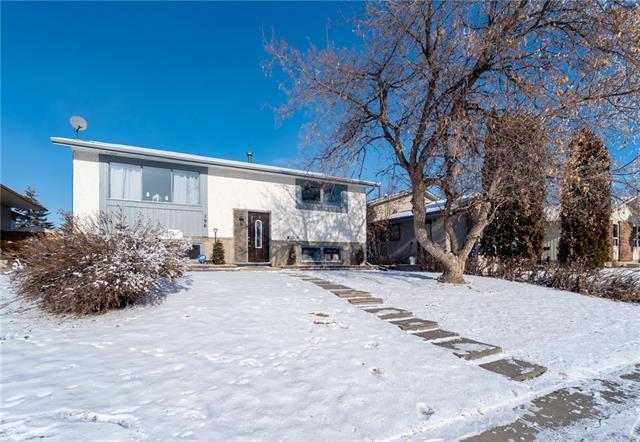 196 Pinecliff Way NE, Calgary, AB T1Y 3X3 (#C4225113) :: Redline Real Estate Group Inc