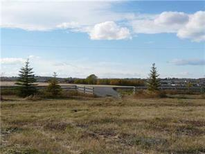 274034 48 Street E, Rural Foothills County, AB T0L 0X0 (#C4225159) :: Calgary Homefinders