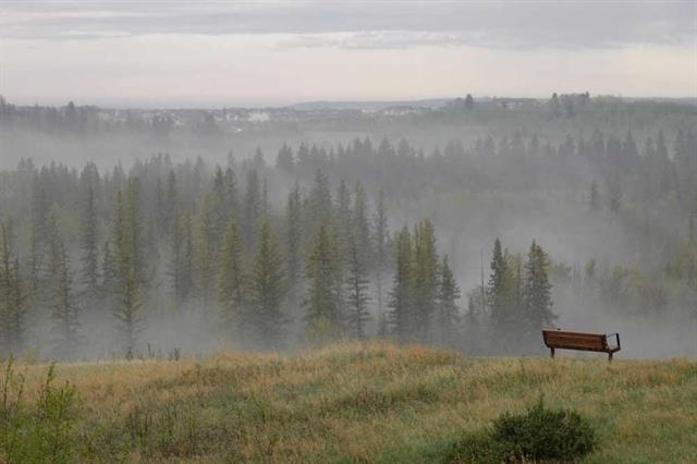13104 Elbow Drive SW #1101, Calgary, AB T2W 2P2 (#C4225424) :: Calgary Homefinders