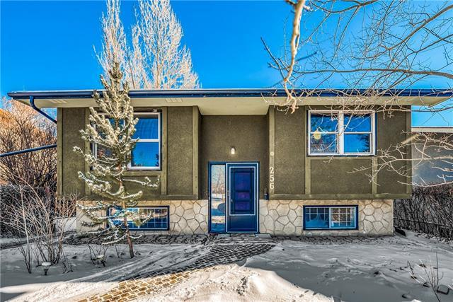256 Silverview Way NW, Calgary, AB T3B 3K3 (#C4225492) :: Redline Real Estate Group Inc