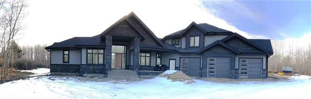 24231 Burma Road, Rural Rocky View County, AB T3R 1B7 (#C4225690) :: Redline Real Estate Group Inc