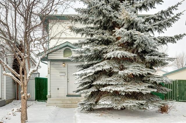 145 Applemead Close SE, Calgary, AB T2A 7S7 (#C4225829) :: Redline Real Estate Group Inc