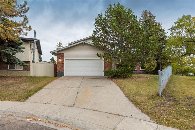 304 Pinemill Way NE, Calgary, AB T1Y 2M7 (#C4226018) :: Redline Real Estate Group Inc