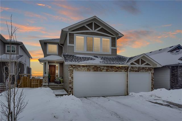 161 Rainbow Falls Heath, Chestermere, AB T1X 0S7 (#C4226191) :: Redline Real Estate Group Inc