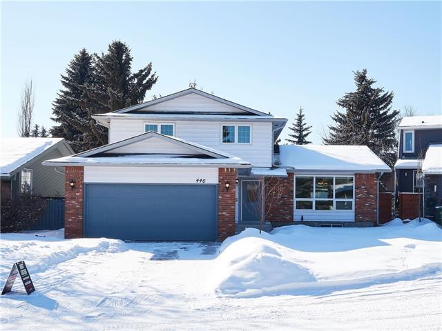 440 Deer Side Place SE, Calgary, AB T2J 5Z9 (#C4226517) :: Redline Real Estate Group Inc
