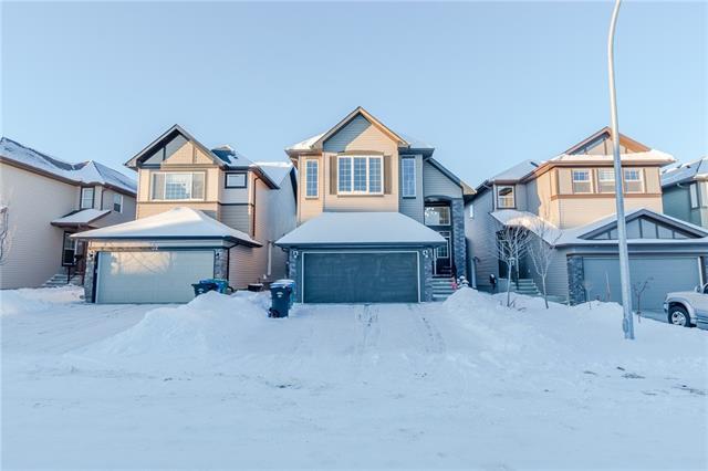36 Saddlelake Gardens NE, Calgary, AB T3J 0R7 (#C4227028) :: Canmore & Banff