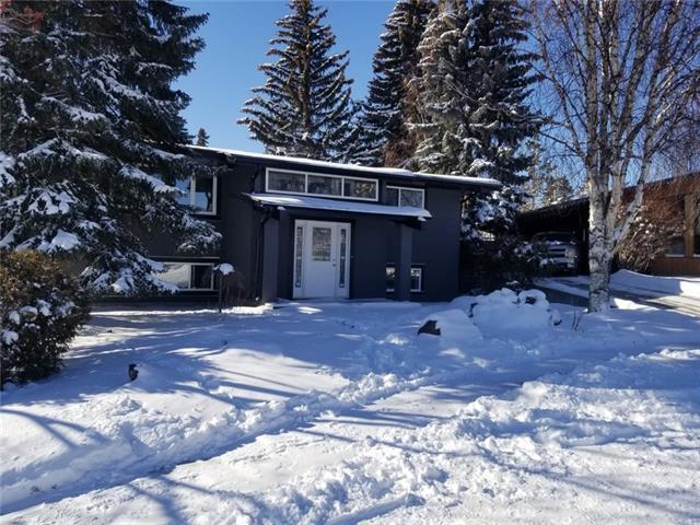 1219 Nicola Place NW, Calgary, AB T2K 2M7 (#C4228505) :: The Cliff Stevenson Group
