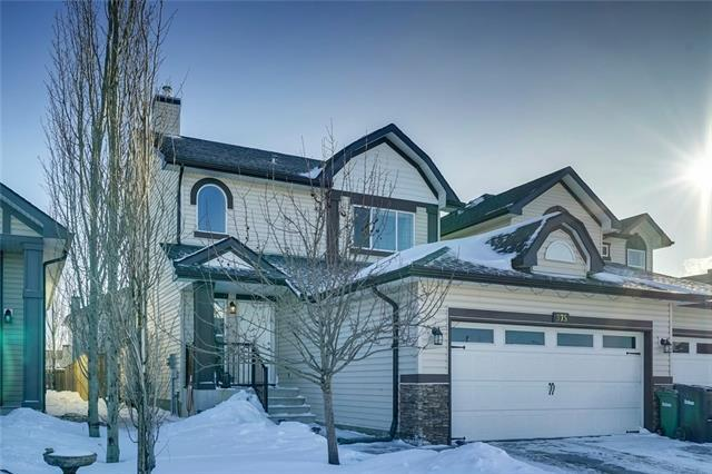 375 Ranch Ridge Court, Strathmore, AB T1P 0A5 (#C4229286) :: Calgary Homefinders