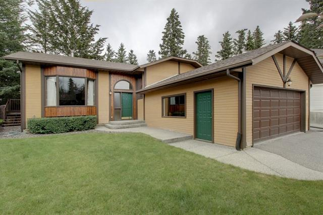 311 Silvertip Close, Canmore, AB T1W 1B6 (#C4229700) :: The Cliff Stevenson Group