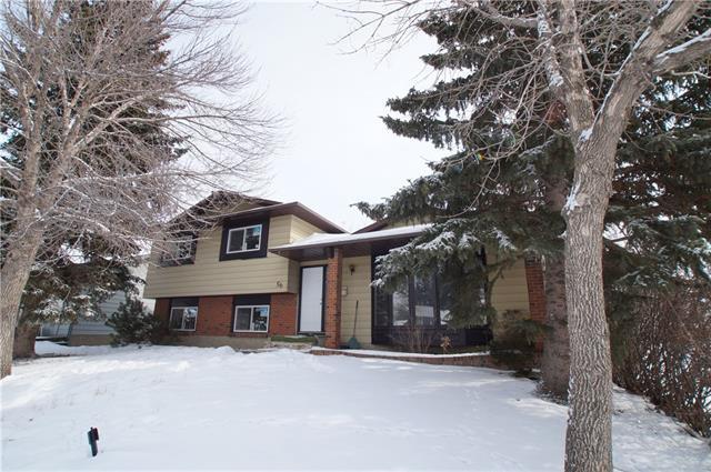 56 Templewood Road NE, Calgary, AB T1Y 4G9 (#C4232506) :: Calgary Homefinders