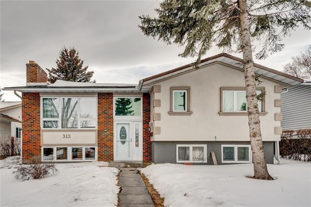 312 Temple Close NE, Calgary, AB T1Y 3B6 (#C4232763) :: Calgary Homefinders