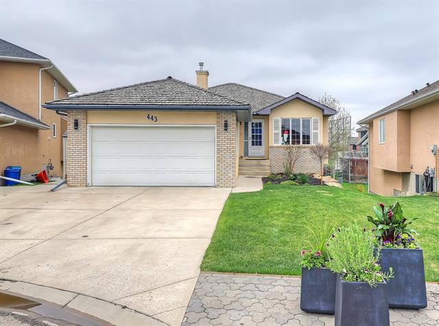 443 Lakeside Greens Court, Chestermere, AB  (#C4233043) :: Redline Real Estate Group Inc
