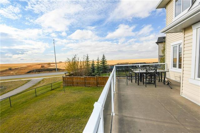 196 Willowmere Way, Chestermere, AB T1X 0E2 (#C4233046) :: Calgary Homefinders