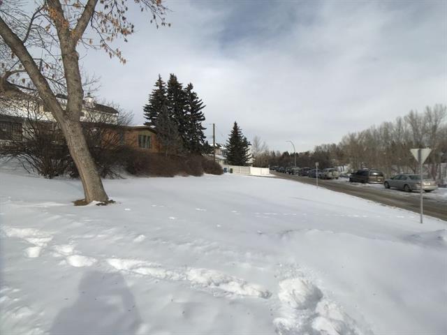 1404 22 Avenue NW, Calgary, AB T2M 1P8 (#C4233267) :: The Cliff Stevenson Group