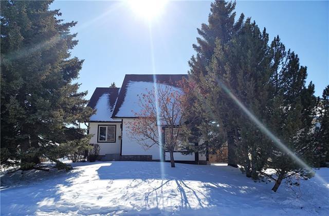 3103 107 Avenue SW, Calgary, AB T2W 2X5 (#C4233295) :: Calgary Homefinders
