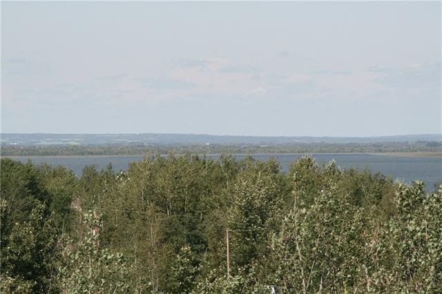 4 View Place, Rural Stettler County, AB T0C 1G0 (#C4233468) :: The Cliff Stevenson Group