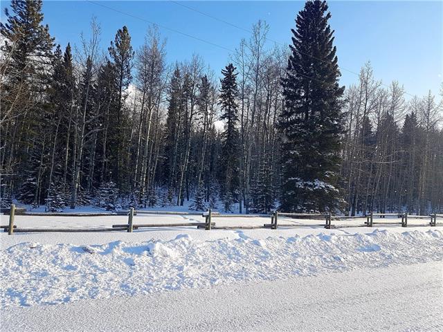 50117 Boyce Ranch Road W, Rural Rocky View County, AB T0L 0K0 (#C4233726) :: Redline Real Estate Group Inc