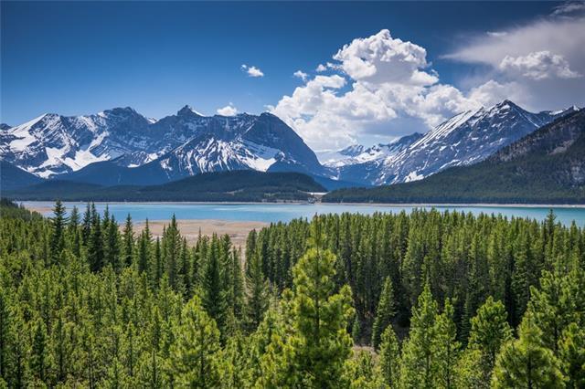 67 Lakeshore Drive, Rural Kananaskis I.D., AB T0L 2H0 (#C4235407) :: Canmore & Banff