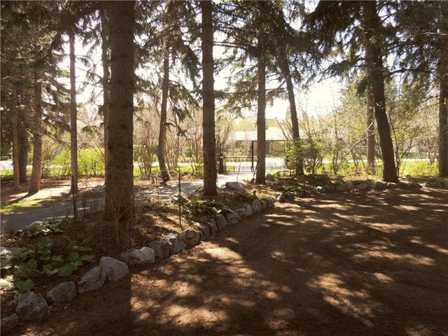 1530 96 Avenue SW, Calgary, AB T2V 5E5 (#C4236173) :: Redline Real Estate Group Inc