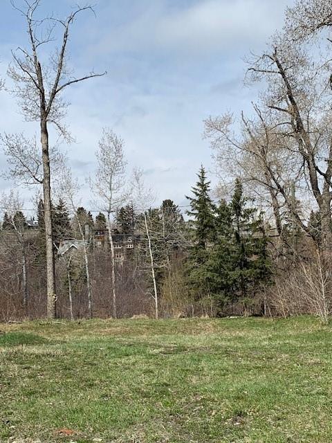 602 Rideau Road SW, Calgary, AB T2S 0R8 (#C4242667) :: The Cliff Stevenson Group