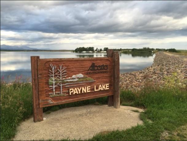 Payne Lake, Rural Cardston County, AB T0K 0K0 (#C4256085) :: Redline Real Estate Group Inc