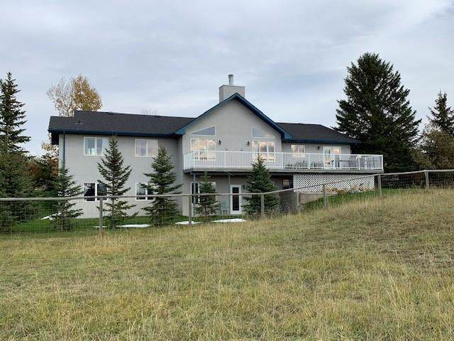 48205 434 Avenue W, Rural Foothills County, AB T0L 1T0 (#C4272040) :: Redline Real Estate Group Inc