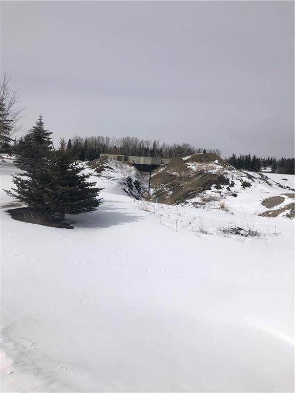 31122 Morgans View, Rural Rocky View County, AB T3Z 0A6 (#C4292733) :: Calgary Homefinders