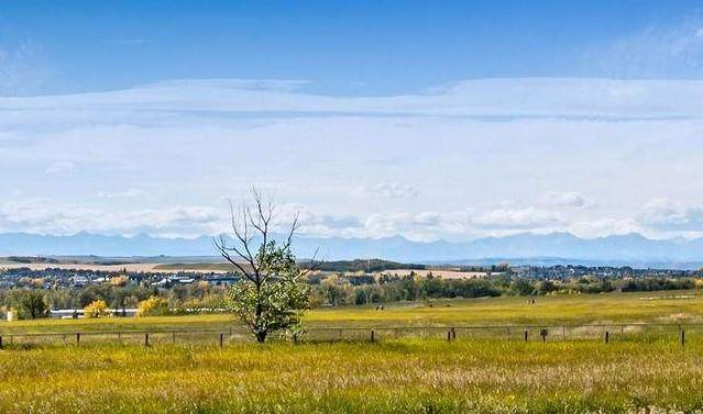 542 Green Haven View, Rural Foothills County, AB T1S 0R3 (#C4301077) :: Canmore & Banff