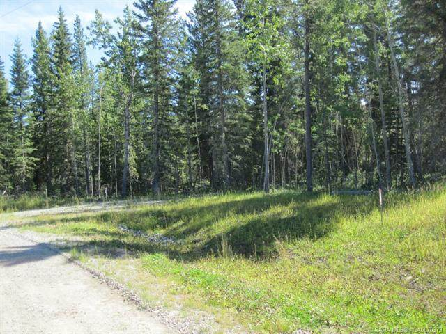 44 Boundary Close, Rural Clearwater County, AB T0M 0M0 (#CA0070373) :: Western Elite Real Estate Group