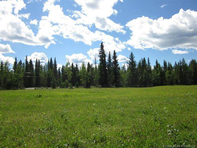 53 Boundary Close, Rural Clearwater County, AB T0M 0M0 (#CA0070375) :: Western Elite Real Estate Group