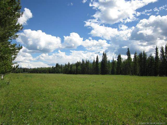 52 Boundary Close, Rural Clearwater County, AB T0M 0M0 (#CA0070379) :: Western Elite Real Estate Group