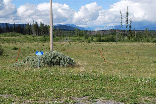 212 Nordegg Industrial Close, Rural Clearwater County, AB T0M 2H0 (#CA0086771) :: Canmore & Banff